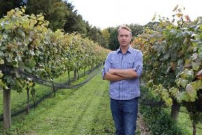 Climate Change Could Change the Taste of Kiwi Wine