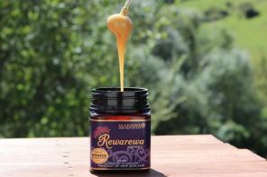 Best Tasting Honey in the World