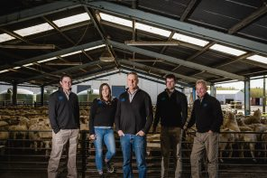 Annual Report Shows Improved Performance for Blue Sky Pastures