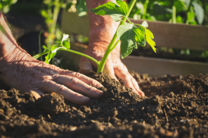 Nude Gardening Day Supports Hungry Families
